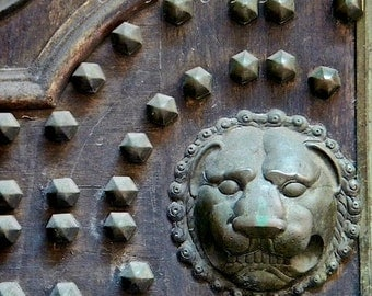 Leo Lion Art, Verdigris Lion, Architectural Detail,Door Photography,Art for Men Lion Print,Wooden Door Fine Art Photography,Zodiac Art Print