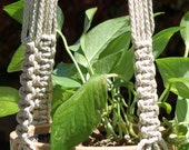 RINGMASTER - Handmade Macrame Plant Hanger Holder with Beads - 6mm Braided Poly Cord in PEARL