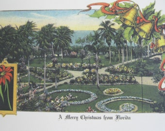 1902 Florida Christmas Cards - Package of Ten - Reprinted from 1902 Vintage Post Card
