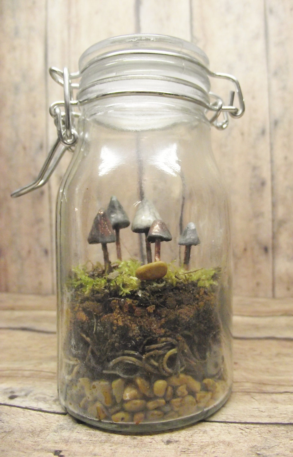 the fungus among us terrarium kit with miniature glow in. Black Bedroom Furniture Sets. Home Design Ideas
