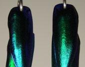 DOUBLE Beetle Wing Earrings
