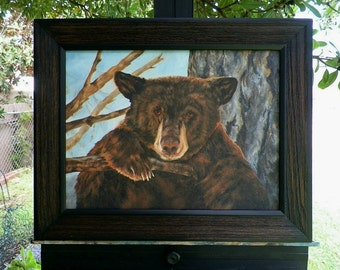 I'm Safe Here Bear Stuck Up in a Tree Original Oil Painting Young Bear Lake Tahoe California by Debra Alouise