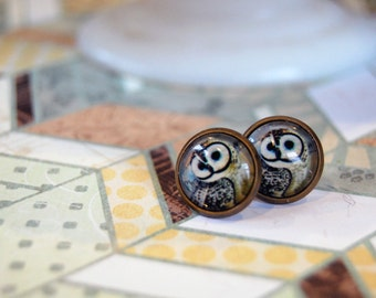 barn owl glass cabochons framed post earrings- woodland illustration- aged brass