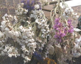 COLORED STATICE naturally DRiED FLOWER  Bunches