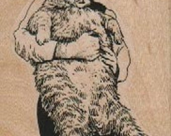 Woman With Big Cat   wood mounted rubber stamp  17772