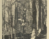 TREE TUMESCENCE etching of Cook Forest