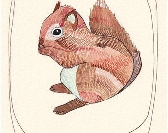 Squirrel Art - Squirrel Illustration - Squirrel Art Print - Baby Squirrel - Art for Kids Room - Nursery Print - 8x10 Print - Little Squirrel