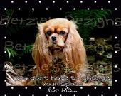 Ruby Cavalier King Charles Spaniel Blank Greeting Card