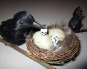 AlteRed aRt EdGaR A PoEs The Raven BiRd NeSt BaBy fEEd ME SkUll OOAK DeCoR
