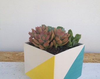 Modern  Square Planter with colors