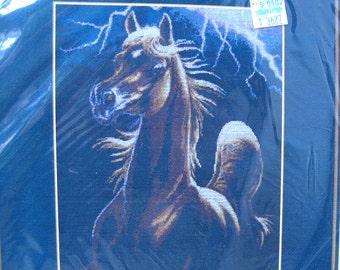 Storm Encounter Cross Stitch Kit by Sharlene Lindskog-Osorio, Arabian Horse Cross Stitch Kit