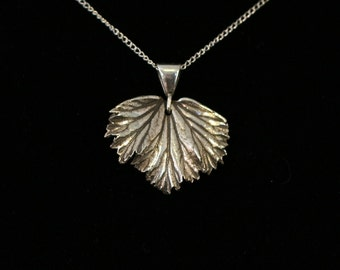 Silver Regal Geranium Leaf