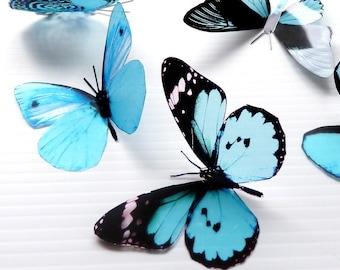 12 x Mixed Aqua 3D Transparent Butterflies