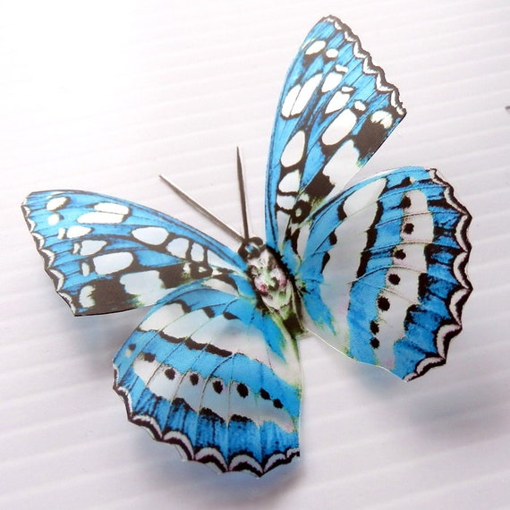 36 x Special Blue 3D Butterflies great for Weddings, Crafts