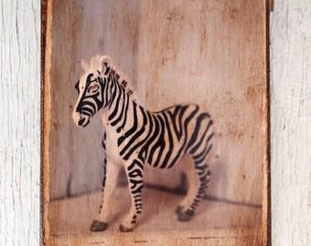 Vintage Toy Zebra  Art/Photo /Wall Art- 4x6