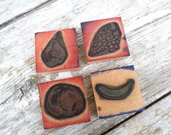 SALE sale sale Vintage 1930/1950 French school print blocks set of 4 fruts