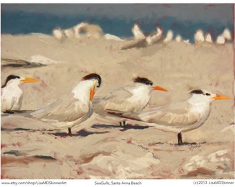 Art Print - Sea Gulls, Santa Anna Beach, Florida - bird, ocean, beach image