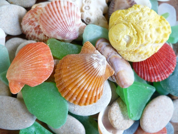 Special request for Bev:) BEACH TREASURES...crafting supply pieces, shells, stones, sea glass