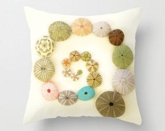 Urchin Swirl Pillow Cover Natural History Urchin Tests Beach Decor Ocean Sea Decor Pastel Urchin Pastel Pink Green Blue