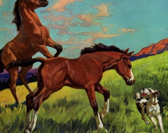 Vintage Horses in the Field Mares and Colts Childrens Storybook Illustration by Diana Thorne