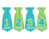 12 Pre-cut Monthly Baby Milestone Waterproof Glossy Stickers - Neck Tie Shape - Design T008-05