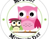 My First Mother's Day - Holiday Baby Waterproof Glossy Sticker - H02-0801