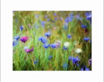 Digital Oil Painting - Wildflower Fields - Art by ruby