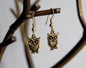 Golden Owl Earrings -SALE-