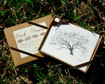 Oak Notes Boxed Stationery Set - Savannah and Low Country Live Oak Tree Cards
