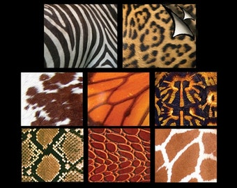 """Animal Print Altered Art Graphic Paper Pack, 3""""x4"""", 24 sheets, N3101"""