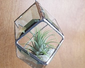Stained Glass Beveled  Hanging Planter for Air Plants or Home Ornament