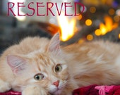 Reserved for Katie - Colbie and Serena