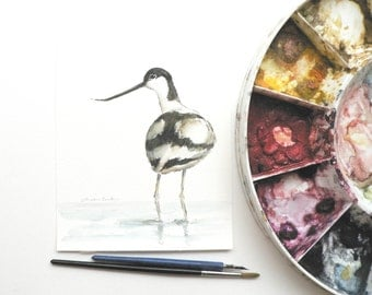 original ink and watercolor painting of a Pied Avocet