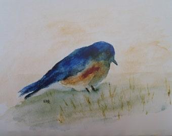 Sweet Little Watercolor Bluebird Print by Rustysecrets