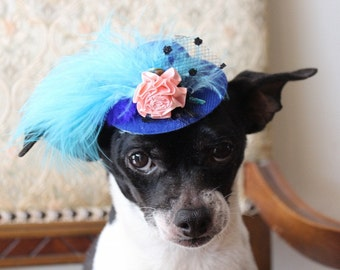 Royal blue  color   mini  hat with   feather and   flowers for dog or cat