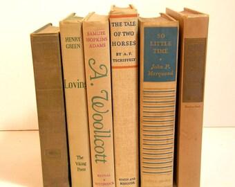 Vintage Book Collection Home Decor Assortment  Tan Beige Decorative Books