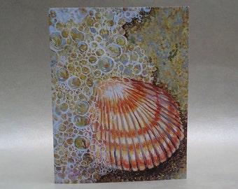Shell Note Card, beach note card, art card, blank note card
