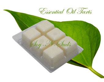 SPEARMINT & EUCALYPTUS ESSENTIAL Oil // Wax Tarts // Soy Tarts // Candle Tarts // Melting Tarts // Scented Tarts