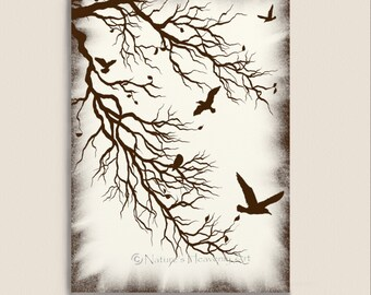 Bare Winter Tree Branches Silhouette 5 x 7 Print, Flying Birds, Woodland, Beauty of Nature, Brown (9)
