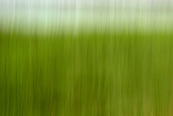 Abstract Photograph, Greener Grass Print, Fine Art Wall Hanging, Nature Photography, Spring Decor, 11X14 Mat, Color, Ready to Frame