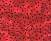 Timeless Treasure Watermelon Seeds  Fabric, yards