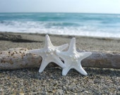 Starfish Hair Barrette or Clip-DOUBLE WHITE-Beach Weddings, Starfish Hair Clip, Starfish Hair, Mermaid Accessories, Bridal Hair Clip, Summer