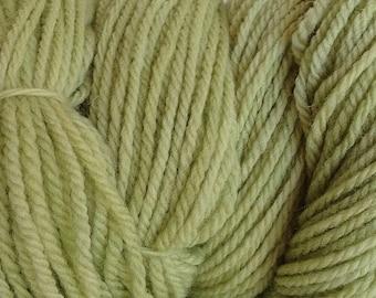 Shabby Green DK Sport Weight Hand Dyed Merino Wool Yarn