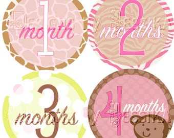 Baby Bellies Monthly Stickers-Jungle Jill