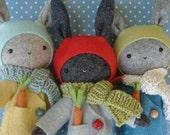 Thistledown Rabbits Kit