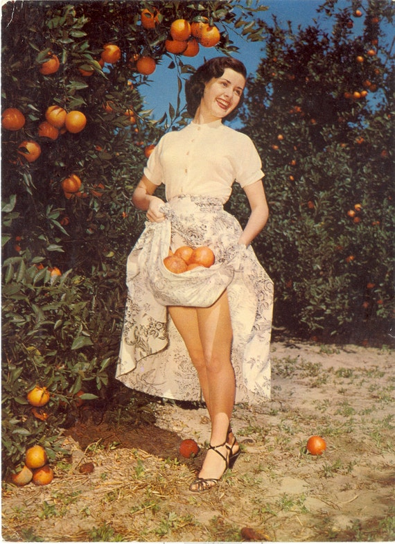 Vintage Florida Postcard Florida Beauties By Savannahsmiles4u