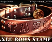 Custom Leather Dog Collar - AXLE ROWS STAMP n' - Studded & Personalized Stamped Text