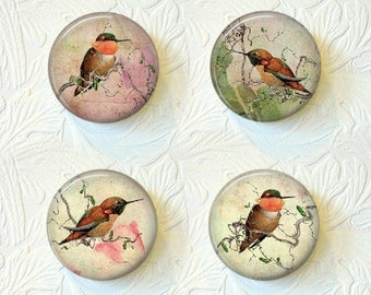 Magnet Set Hummingbirds Buy 3 Get 1 Free  014M