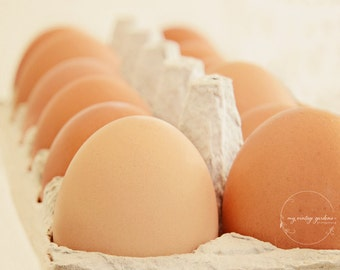 brown eggs for Easter-Easter photography-Easter photo-holiday photo-colored eggs  (5 x 7 Original fine art photography prints) FREE Shipping