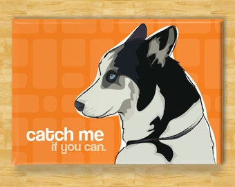 Husky Magnet - Catch Me If You Can - Siberian Husky Gifts Refrigerator Fridge Dog Magnets